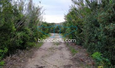 in marina di ragusa the nature reserve has many footpaths