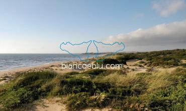 randello is a protected area for the amazing dunes and Mediterranean bush